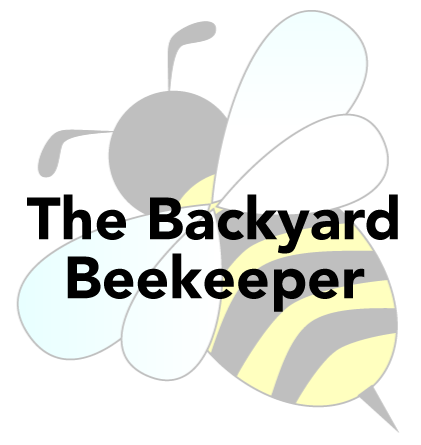 Backyard Beekeeping Is Increasing In Popularity On Long Island